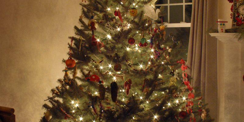 Christmas tree needing removal